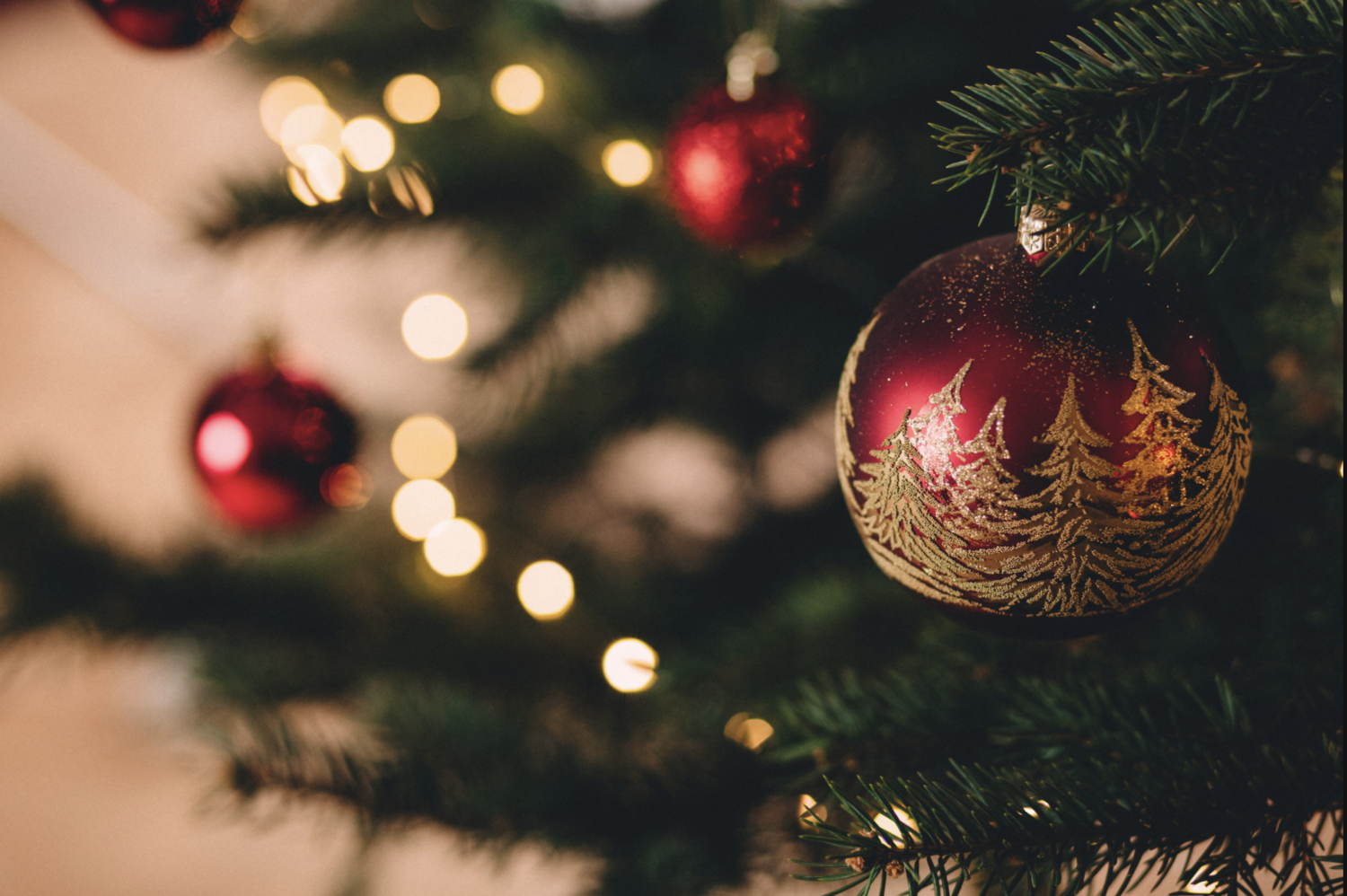 Christmas Cheer and the New year…… Blog